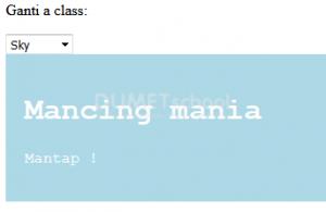 fungsi-ng-class-pada-angularjs-rangga2-250717