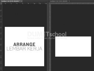 Cara Membuat Tampilan Lembar Kerja Photoshop Menjadi Dua
