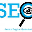 check seo website tools