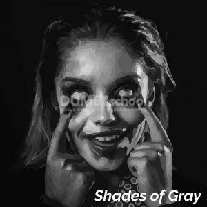 Membuat Efek Shades of Gray di Illustrator