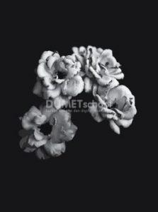 Membuat Gambar Shade of Grey di Adobe Illustrator
