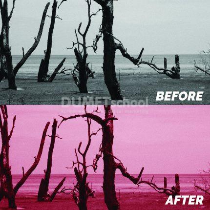 Menghidupkan Gambar Dengan Color Balance di Photoshop